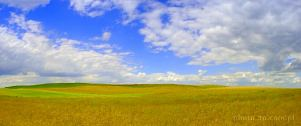 country; field; clouds; horizon