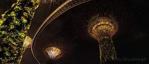 Asia; Singapore; Gardens by the Bay